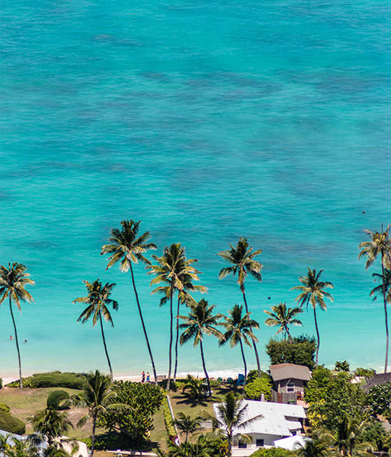 About Us - List Sotheby's International Realty Hawaii